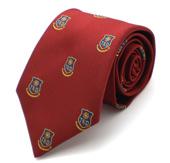 School tie design 11